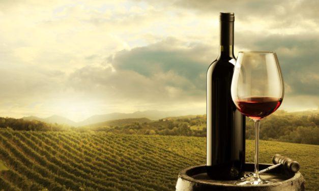 Il vino israeliano sugli scaffali degli Emirati