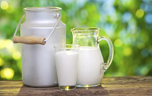 Israele: ricercatori israeliani lavorano per produrre latte dal lievito